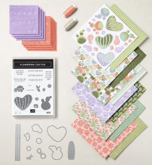 Flowering Cactus Medley. - Stampin' Up!® - Stamp Your Art Out! www.stampyourartout.com