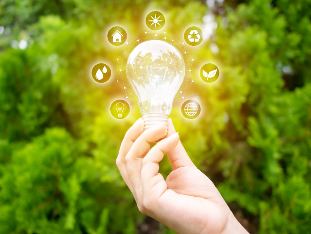 concept-save-energy-efficiency-hand-holding-light-bulb-with-eco-icons_20693-211