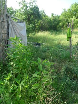 dușul solar mult iubit de toți vecinii și vizitatorii. mulțumim Gabi Kamin pentru concept și sponsorizare!