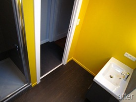 Standing Renovation Yellow Shower Room0012