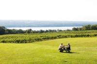 Photo of two people at a picnic table in a field with vineyards in background