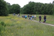 Some of our walkers