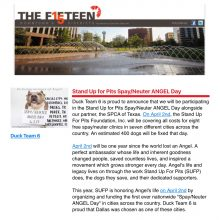 """Thank you """"The FIFTEEN DOWNTOWN DALLAS!"""""""