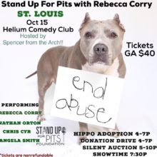 TODAY we Stand Up For Pits in ST. LOUIS!!