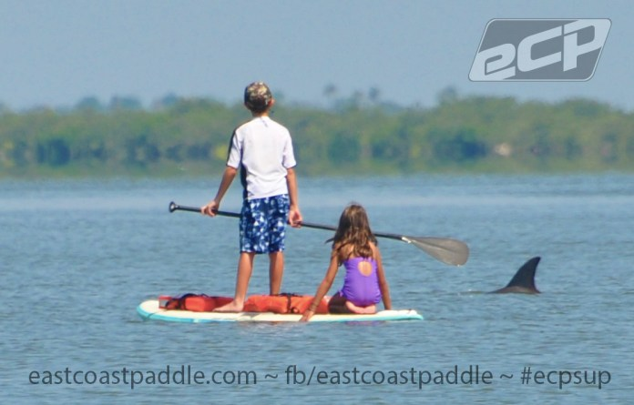 dolphins-kids-east-coast-paddle-surf-stand-up-paddle-board-boards