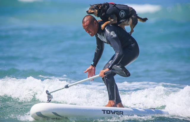 Cecily Trowbridge: Guinness Book World Record-breaking AbbieSurfs on the Tower Adventurer iSUP via The Guardian
