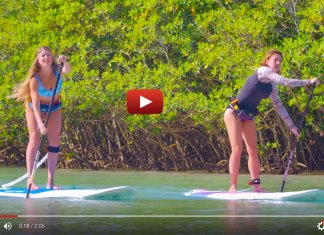 ACE-TEC Performer Sup   Surf-Inspired Longboard Shapes