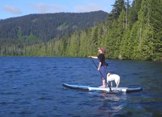 Slingshot Sup Showing Off Some Amazing Pacific Northwest Scenery
