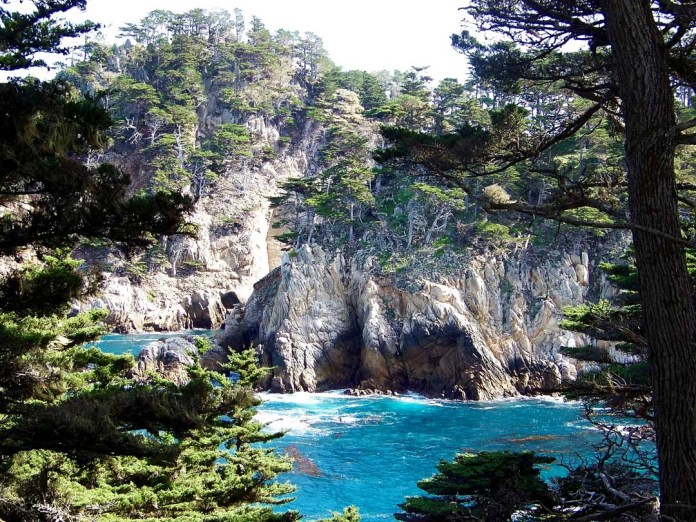 Point Lobos State Reserve Central California