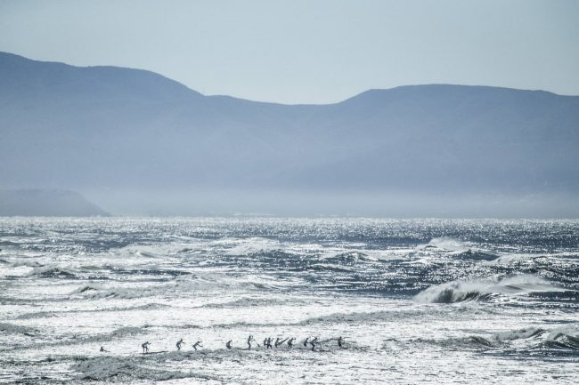 APP World Tour Red Bull Heavy Water mens train swell