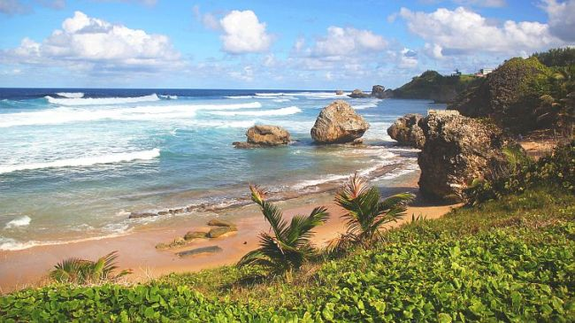Barbados Soup Bowls Bathsheba