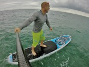 Jimmy Lewis Cruise Control 10.6ft
