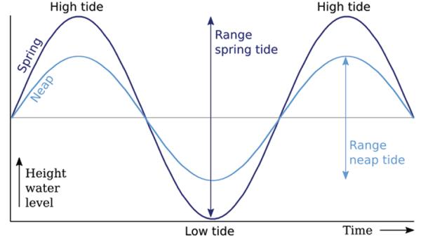 tidal-graph