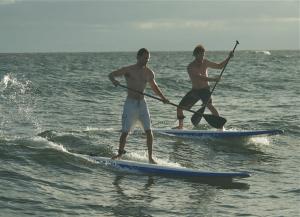 SUP surfing Petit Trou