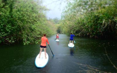 Tobago Adventure Tour