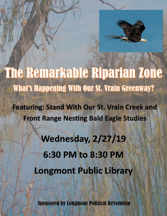 thumbnail of Longmont Public Forum presentation flyer