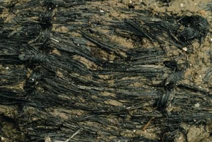 1445247534-Detail_of_textile