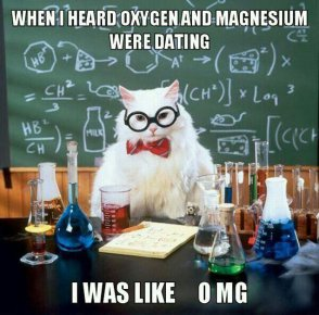 funny-scientist-cat-elements-lab