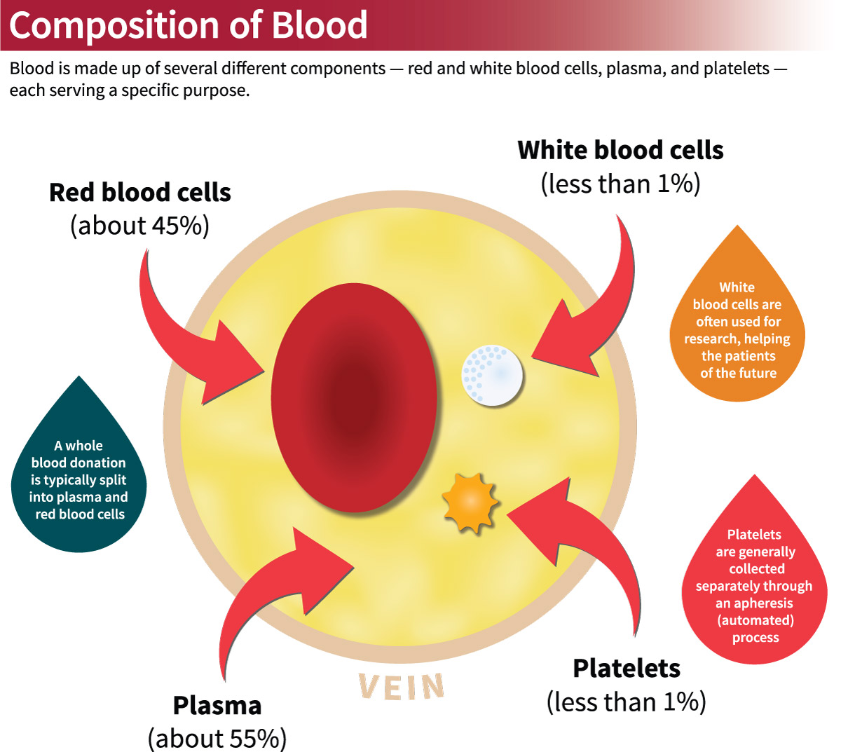 Types Of Blood Donations Stanford Blood Center