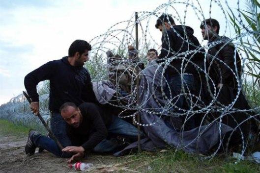 migranti10