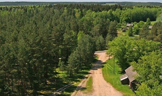 Беловешка шума - место историјског злочина