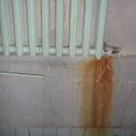 21 января 2012 года в третьем подъезде 10 ДОСа неизвестные сорвали трубу отопления