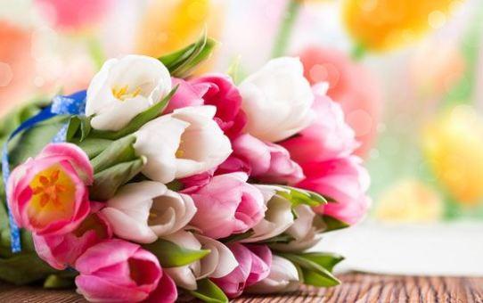 Весне и женщинам в подарок