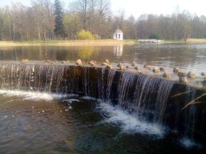 Ранняя весна в Станьково.