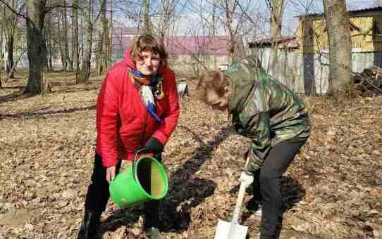 Требуются волонтеры для работ по благоустройству графского парка