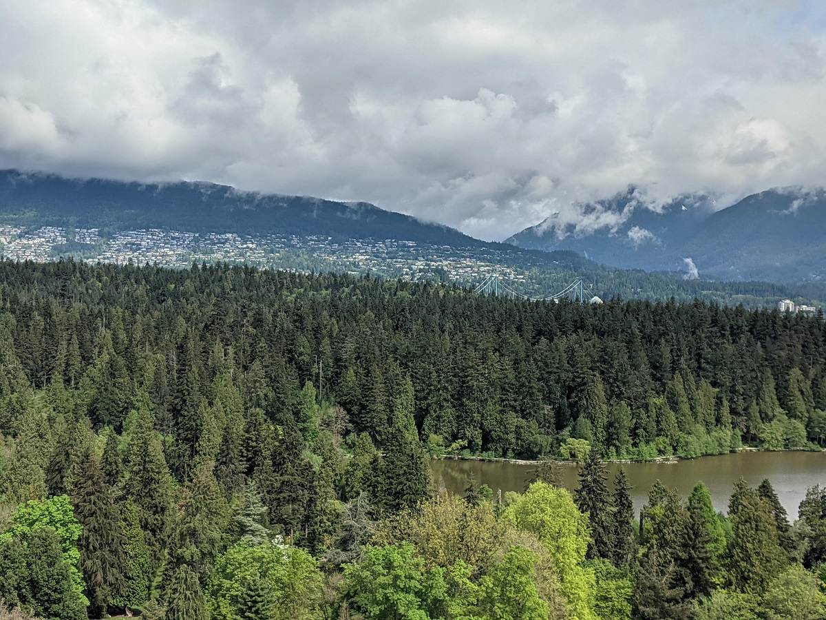 A view of the forests of Stanley Park looking towards the mountains