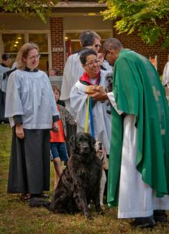 blessing_of_the_animals-20111009-RM_111009_1488