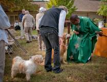 blessing_of_the_animals-20111009-RM_111009_1498