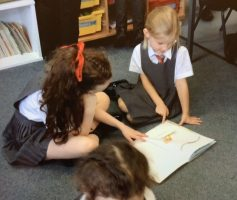 Dragonflies reading 2