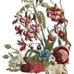 June, Ode to Henry Fletcher (Pad 12×16)