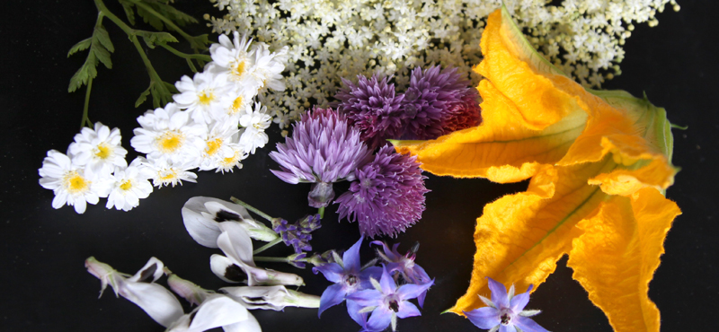 edilble-flowers