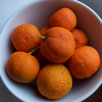 seville_orange