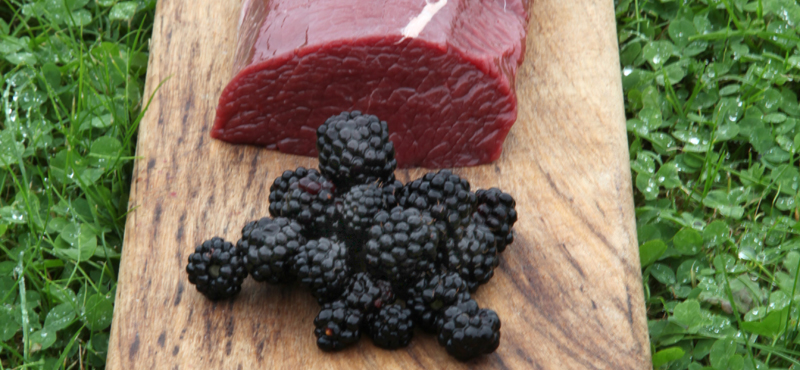 Venison and blackberries