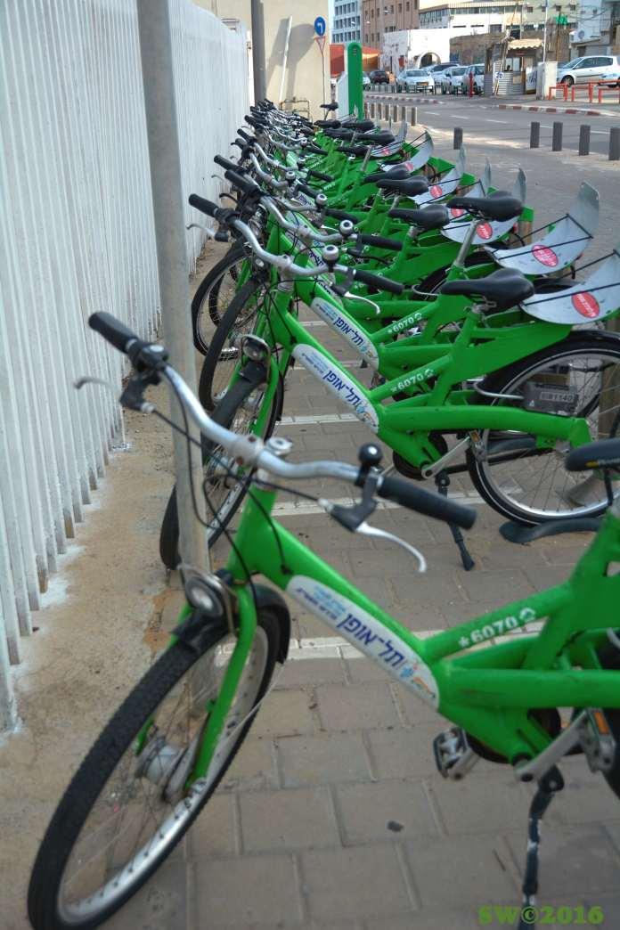 Rental bikes copy.jpg