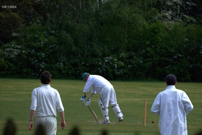 Cricket on the Heath