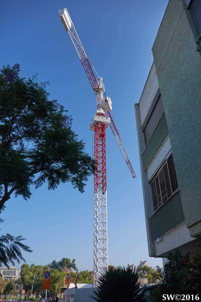 crane-brandeis