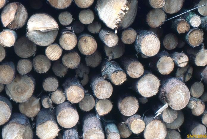wood-logs-cotswolds