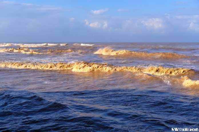 Muddy sea