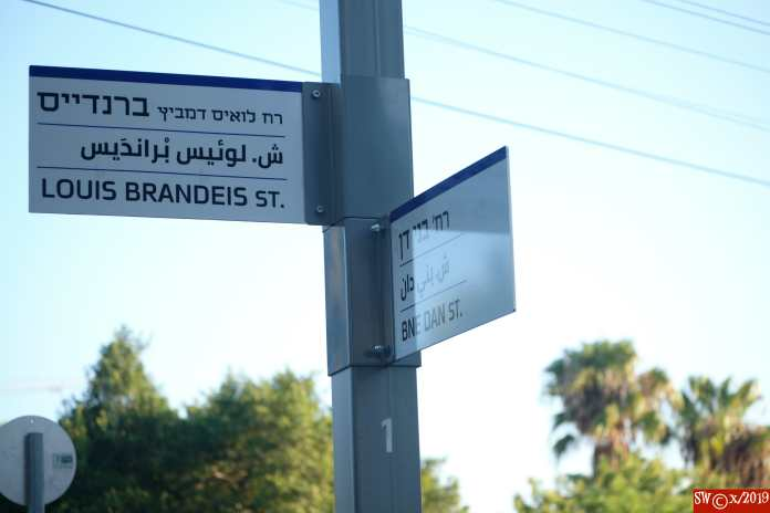 Bnei Dan - Brandeis