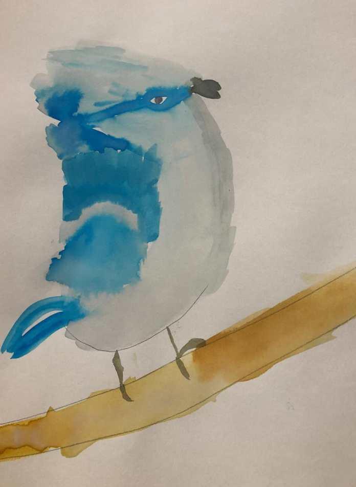 Gali's bird