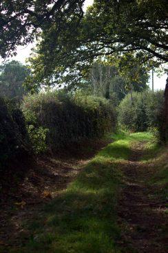 Deadman's Lane