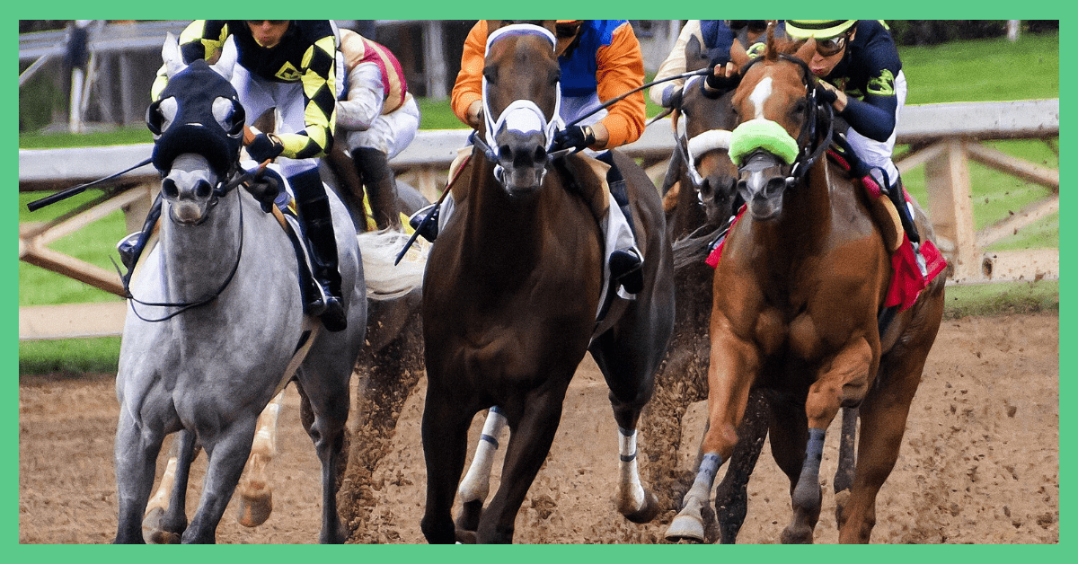 The image shows five horses racing against one another.