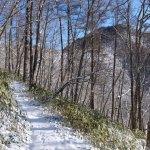 2017年2月 奥多摩/雲取山(サオラ峠-三条の湯-雲取山-鴨沢)