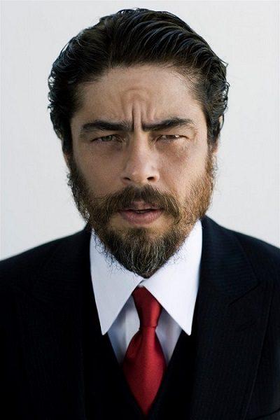 Бенисио дель Торо. Биография
