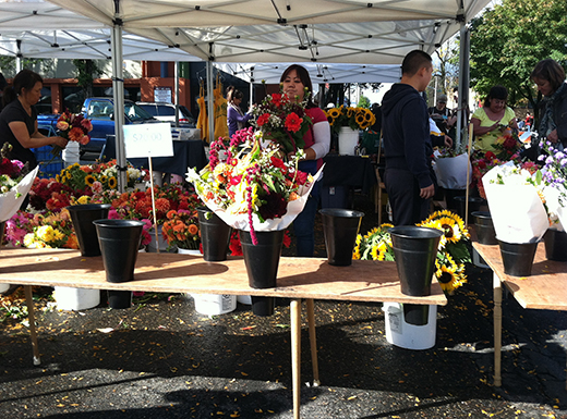 Hollywood Farmers Market is one of 8,000 markets across the country that help to preserve rural livelihood and farmland, support local economies and increase access to fresh nutritious food. (Jane Perkins)