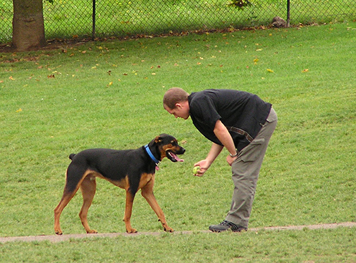 Portland Parks & Recreation offers 33 places for dogs to play off-leash in the city. The organization recently approved Grant Park Neighborhood Association's project proposal to create a permanent fenced area for dogs. (Portland Parks and Recreation)